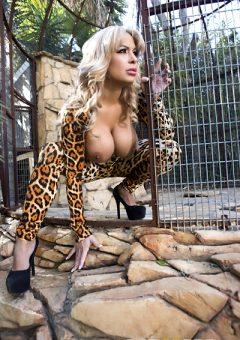 Cougar Sighting Alyssa Lynn Milfs Like It Big