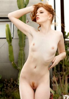 Foxy From Nude Art Pictures