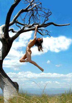 Thelifeerotic – Valeria – Tree Femme